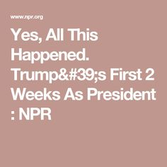 Yes, All This Happened. Trump's First 2 Weeks As President : NPR