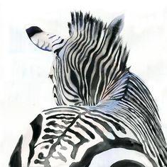 Zebra Art Print of Watercolor Painting Safari by rachelsstudio