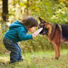 Relato de un joven colaborador de #PiensoPet acerca de un #perro y cómo éste le salva la vida.