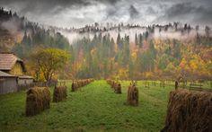 Rising Fog Over The Maramures | Romania |Photo by Andreea Oana