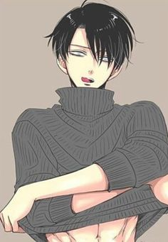 SNK | Shingeki no Kyojin | AOT | Attack on Titan | Levi Ackerman