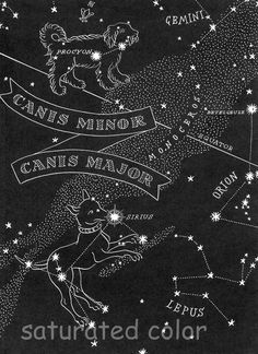 antique sirius constellation map - i like this style and how it would work with my current pleadies tattoo... the font and writing is where i'd honor all my pets