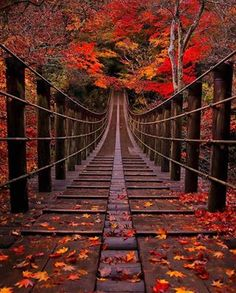 Beautiful sprawling images of nature in all its glory. Enjoy the landscape eyegasms and maybe even a few cute girls just to spice it all up. Autumn Photography, Amazing Photography, Landscape Photography, Scenery Photography, Night Photography, Landscape Photos, Beautiful Nature Wallpaper, Beautiful Landscapes, Fall Pictures