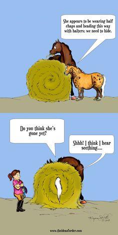 - Horses Funny - Funny Horse Meme - - The post appeared first on Gag Dad. Funny Horse Memes, Funny Horse Pictures, Funny Horses, Cute Horses, Funny Animal Memes, Pretty Horses, Horse Love, Beautiful Horses, Beautiful Cats