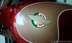 1961 Ducati 175 TS - Portal compra venta vehículos clásicos