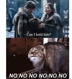 """Ramsay Bolton Needs To Leave """"Game Of Thrones"""" Now Winter Is Here, Winter Is Coming, Game Of Thrones Jokes, Game Of Thrones Wallpaper, Game Of Thones, Fire Book, Got Memes, Valar Morghulis, Hilarious Pictures"""