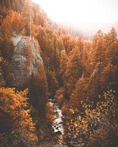 Hello Autumn  - bon—-voyage: Nick La Cava