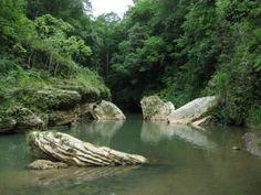 Pídele al Gobernador que cumpla con su compromiso de proteger el Karso de Puerto Rico.   Foto del Río Tanamá. Suministrada