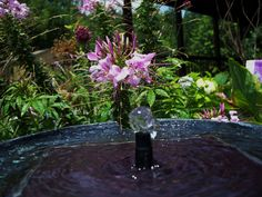 I love the sound of a bubbling fountain in the garden.