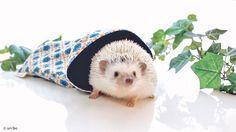 薄手の生地で涼しく快適に♪ 夏用寝袋のMサイズです。 http://unibo.theshop.jp/categories/218169 #unibo #ハリネズミ #小動物 #寝袋 #ペット #ペットグッズ #ペット用品 #Hedgehog #Pet #PetSupplies #Animal #SmallAnimal