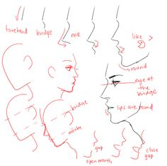UMM PEOPLE ASKED ABOUT NOSES AND EARS SO YEAH!!  please look up real references too don't just look at THESE CAUSE REAL REFS ARE THE BEST I HOpe this helps somewhat i wan't sure waht to cover SOBS