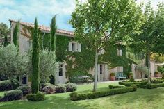 A house in the Luberon: outside, the garden remains classic
