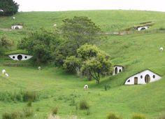 Nuova Zelanda...in armonia con la natura