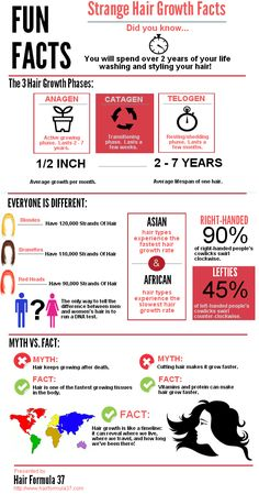 VERY INTERESTING  2 Interesting Facts About Human Hair - PositiveMed