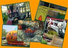 fall in Harbor Country - come visit!