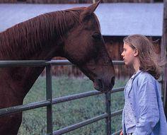Une photo du film L'Homme qui murmurait a l'oreille des chevaux