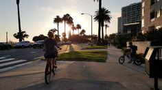 Mój pierwszy dzień świstaka w Santa Monica - cosmicflower.pl
