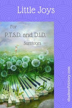 Comforts for Trauma Survivors with PTSD or Dissociative Identity Disorder