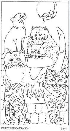 Crabtree Cats