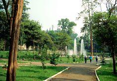 Chapultepec - Parque. Veremos los estatuas de los animales. Hay muchos puntos de referencia a ver. En el jardín, los flores son muy bonita. La gente toma fotos para recordar.