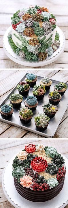 Cakes' Turn Prickly Plants into Delicious Desserts These buttercream succulent cakes and cupcakes are almost too adorable to eat! buttercream succulent cakes and cupcakes are almost too adorable to eat! Pretty Cakes, Beautiful Cakes, Amazing Cakes, Beautiful Desserts, Amazing Food Art, Succulent Cupcakes, Cactus Cupcakes, Cactus Cake, Cool Cupcakes