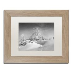 """Trademark Art """"Dressed For Winter B&W"""" by Philippe Sainte-Laudy Framed Photographic Print Size: 1"""