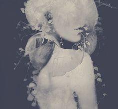 The Photo Art Of Leslie Ann O'Dell