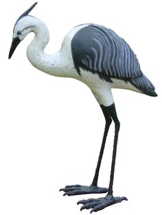 Heron - next picture