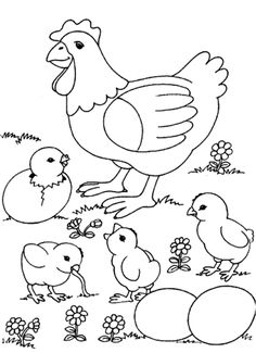 Little Chick And Hen Farm Animal Coloring Pages