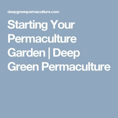 Starting Your Permaculture Garden | Deep Green Permaculture