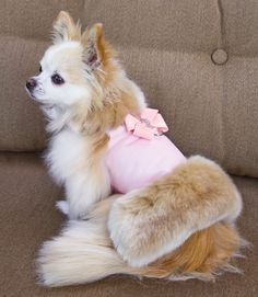 Pet fashion designer extraordinaire, Susan Lanci has taken a top-selling style, the Nouveau Bow from her harnesses, collars, hair bows and leashes, and applied it to these faux fox fur dog muff jacket