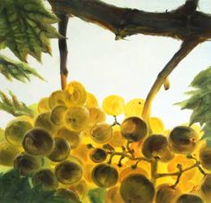 """Saatchi Art is pleased to offer the painting, """"Malvasia vine,"""" by Natalia Mikhaylina. Original Painting: Oil on Canvas. Size is 0 H x 0 W x 0 in. Oil On Canvas, Vines, Saatchi Art, Original Paintings, Painted Canvas, Arbors, Vitis Vinifera"""