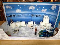 Arctic biome model