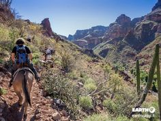 In viaggio alla scoperta di Baja California - #Viaggiare #BajaCalifornia