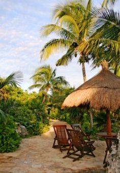 Tropical garden design ideas can create a smart and relaxing patio area for you to enjoy