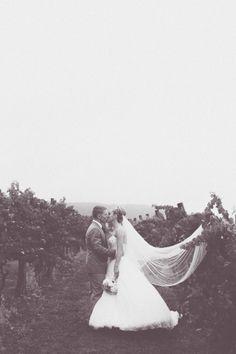 Natasha and JP's Beautiful Vineyard Wedding Lifestyle Photography, Portrait Photography, Wedding Keepsakes, Vineyard Wedding, Wedding Photos, In This Moment, Wedding Dresses, Beautiful, Marriage Pictures