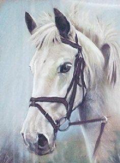 beautiful horse paintings -