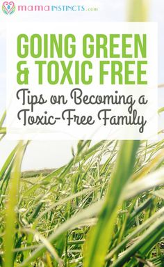 Take the step to a more non-toxic lifestyle with these easy tips and resources…
