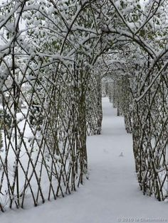 Winter Gardens | Twig Arbor in snow | La Chatonniere in Winter