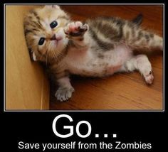 Go... save yourself from the zombies