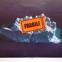 #collage #art #collageart #collagecollectiveco #collage_expo #jamesspringall #originalart #analogcollage #artistsoninstagram #globalwarming #fragile #greenpeace #greenland #iceberg #melting #handmade by jamesspringall_