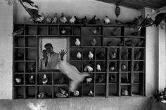 MARILYN SILVERSTONE INDIA. Delhi. 1960.