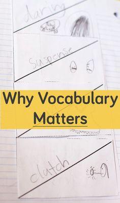 Why vocabulary matte