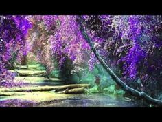 Reiki Healing to Clear Financial Blocks...this music was so beautiful...pan flute.