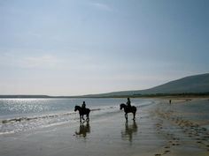 Horse Riding Holidays and Horse Riding Day Treks on Dingle Peninsula, Ireland | Rides by Dingle Horseriding
