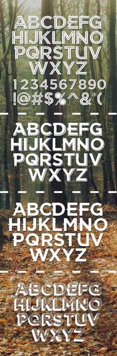 Free Fonts for Designers (15 Fonts) - Some good ones!