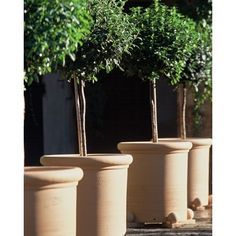 This would be perfect for the side yard once we put down the brick. Container Flowers, Container Plants, Container Gardening, Plant Containers, Topiary Garden, Garden Urns, Beach Gardens, Outdoor Gardens, Little Gardens