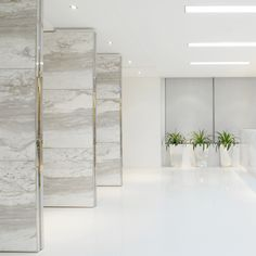 white marble and brass trim - Paul Hastings LLP - Robarts Interiors and Architecture