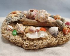 Decoración costera concha arte mesa acento por Beachwalkvisions