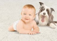 ricette naturali per la pulizia dei tappeti